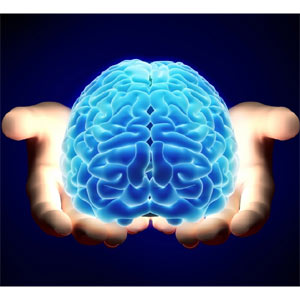 Neuromarketing Cerebro